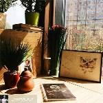 Сова, кофейня, Фото: 16