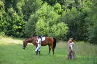 В Ясной поляне стартовал турнир по конному спорту, Фото: 28