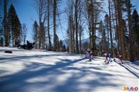 Состязания лыжников в Сочи., Фото: 39