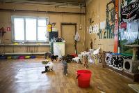 Волонтеры спасли кошек из адской квартиры, Фото: 75