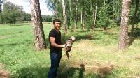 Эколого-трудовой отряд в Ясной Поляне, Фото: 3