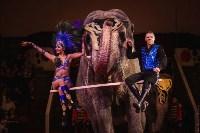 «Шоу Слонов» в Тульском цирке, Фото: 3