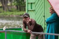 Запуск лебедей в верхний пруд Центрального парка Тулы, Фото: 9