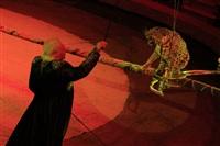 Цирк «Вива, Зорро!» в Туле , Фото: 20