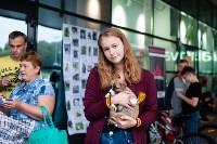 Благотворительный фестиваль помощи животным, Фото: 13