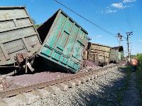 В Тульской области грузовой поезд сошел с рельсов, Фото: 22