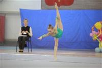 IX Всероссийский турнир по художественной гимнастике «Старая Тула», Фото: 31