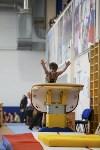 Спортивная гимнастика в Туле 3.12, Фото: 18