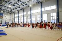 Спортивная гимнастика в Туле 3.12, Фото: 46