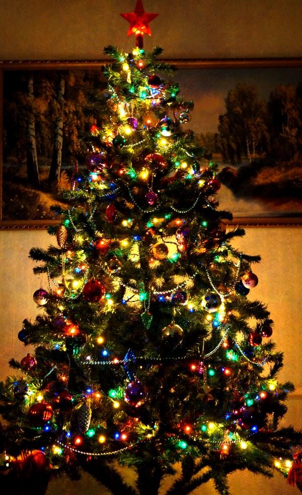 Нравится елочке Наше торжество. Весело, весело Встретим Рождество!