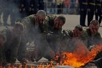 День Тульской дивизии ВДВ: на площади Ленина приземлились парашютисты, Фото: 81