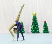 Кубок общества «Авангард» по художественной гимнастики, Фото: 23