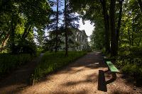 Летний день в Ясной Поляне, Фото: 54