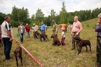 Выставка охотничьих собак под Тулой, Фото: 82