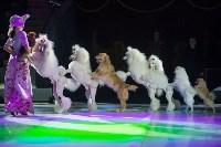 Тульский цирк, Фото: 33