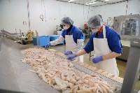 Дмитрий Миляев посетил предприятие по производству замороженной рыбы и полуфабрикатов, Фото: 4