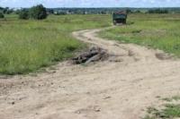 Строительство дороги Ясногорск-Ревякино. 26.06.2014, Фото: 1
