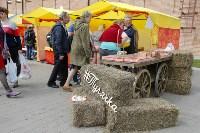 День пряника в Туле: Большой фоторепортаж, Фото: 15