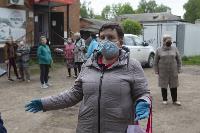 В Тульской области Богородицкий район атаковали мошки, Фото: 2