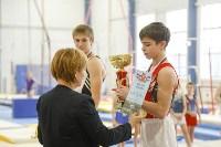 Спортивная гимнастика в Туле 3.12, Фото: 65