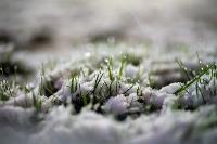 Апрельский снегопад - 2021, Фото: 18