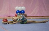 Соревнования по художественной гимнастике 31 марта-1 апреля 2016 года, Фото: 24
