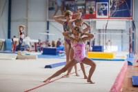 Тульские гимнастки готовятся к первенству России, Фото: 3