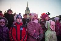 В Тульском кремле открылась новогодняя елка, Фото: 49