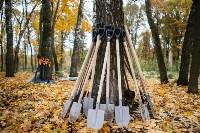 В Центральном парке Тулы появился сосновый бор «Слободы», Фото: 1