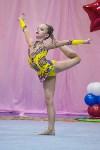 Соревнования по художественной гимнастике 31 марта-1 апреля 2016 года, Фото: 70