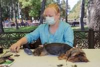 Фестиваль помощи животным в Центральном парке, Фото: 11