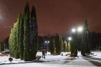 Украшение парка к Новому году, 15.12.2015 , Фото: 14