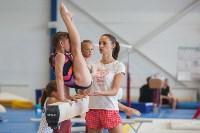 Тульские гимнастки готовятся к первенству России, Фото: 45