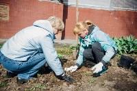 Посадка деревьев во дворе на ул. Максимовского, 23, Фото: 15