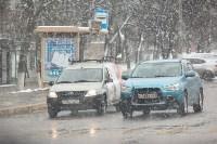 Мартовский снег в Туле, Фото: 48