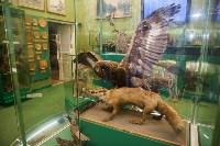 Тульский областной краеведческий музей, Фото: 74