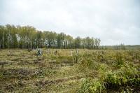В Веневском районе высажено 24 тысячи сосен, Фото: 16