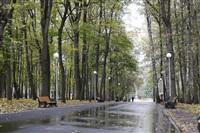 Осень, Фото: 1