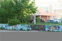 Лось во дворе дома №45 по ул. Плеханова, Фото: 9