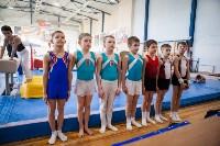 Мужская спортивная гимнастика в Туле, Фото: 33