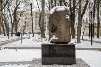 Рогожинский парк, зима 2019, Фото: 12