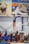 Спортивная гимнастика в Туле 3.12, Фото: 127