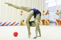 Художественная гимнастика. «Осенний вальс-2015»., Фото: 83