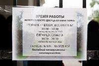 «Город – театр» Богородицк: как преображается один из старейших городов в Тульской области, Фото: 63