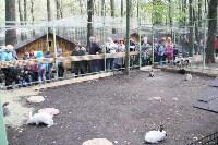 В Новомосковске открылся мини-зоопарк, Фото: 21