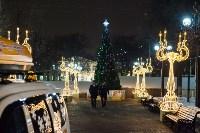 Дюмин осмотрел новогоднюю Тулу, Фото: 41