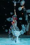 В Тульском цирке прошла премьера аква-шоу, Фото: 61