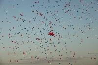 Флешмоб с шариками, Фото: 15