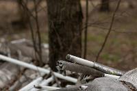 В лесу в Узловском районе обнаружена свалка ртутных ламп, Фото: 5