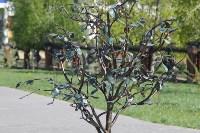 В сквере «Тульское чаепитие» зацвела вишня, Фото: 2